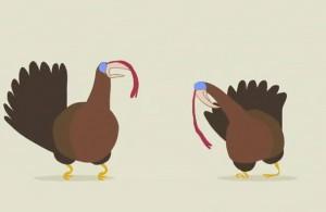 Turkeystep