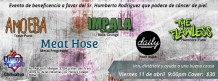 Toquin a beneficencia este viernes 11 de abril @ House of Blues